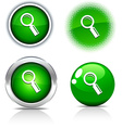 Searching buttons vector image vector image