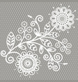 white lace background vector image vector image