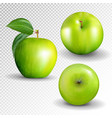 green apple collection set of fruit isolated on vector image