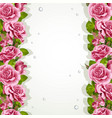 background for your text with pink roses vector image vector image