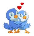 cute birds couple cartoon vector image