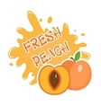 Fresh Peach splash icon logo sticker Fruit vector image vector image