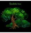Magic tree isolated on black background vector image vector image