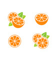 orange fruit and cut oranges vector image vector image