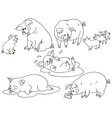 Pig Set vector image vector image