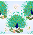 seamless texture peacocks beauty tropical birds vector image vector image