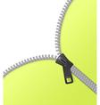 Zipper background green vector image vector image