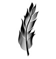 stylized bird feather linear object for vector image