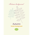 Autumnal greeting card with leave vector image