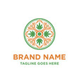 marijuana leaf logo design vector image