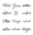 olive oil typographical set vector image vector image