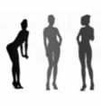 shadows beautiful girls set vector image vector image