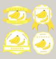 the yellow banana vector image vector image