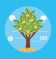 tree plant of bills dollar isolated icon vector image