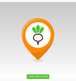turnip flat pin map icon vegetable root vector image vector image