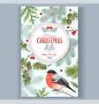 christmas bullfinch frame vector image