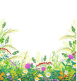 colorful frame with summer meadow plants vector image vector image