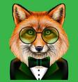 fox creative colorful hand-drawn portrait fox vector image
