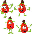 rose hip cartoon - funny vector image vector image