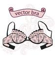sexy vintage green bra vector image vector image