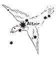 the eagle vintage vector image vector image