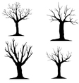 tree-without-leaves-silhouette vector image