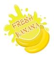 Fresh banana splash icon logo sticker Fruit vector image
