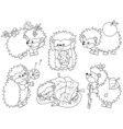 Black And White Hedgehog Set vector image vector image