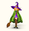 cartoon witch in purple hat with broom isolated vector image