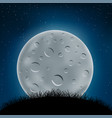 night grass hill and moon vector image