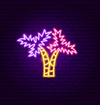 palm trees neon label vector image