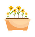 beautiful flowers icon vector image vector image