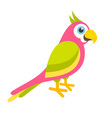 cute colorful parrot vector image vector image