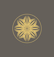 luxury logo design template vector image vector image