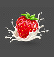 ripe red strawberry fruit vector image