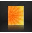 Summer Orange Banner vector image vector image