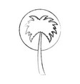 tree palms isolated icon vector image vector image