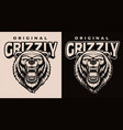 a black and white grizzly head vector image
