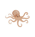 detailed flat icon of big octopus edible vector image