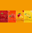 juicy and fresh fruit cherry strawberry mango vector image vector image