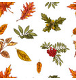 seamless pattern with different autumn leaves vector image vector image
