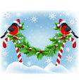 Two bullfinch in Santa hat sitting vector image vector image