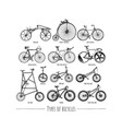 types of bikes vector image vector image