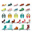 unisex shoes womens mens set store shelves vector image vector image