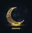 ramadan kareem greeting card - islamic crescent vector image vector image