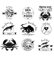 sea food labels badges and design elements vector image vector image