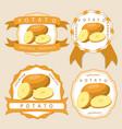 the theme potato vector image vector image