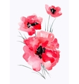 Watercolor of ared flower on a white vector image vector image