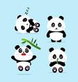 cute panda cartoon set concept vector image vector image