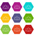 lotus flower icons set 9 vector image vector image